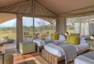 323410 Days Tour to Kenya & Tanzania Luxury Safari (Lodging)