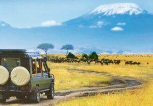 324213 Days Tour From Kenya to Tanzania and Zanzibar ( Lodging)