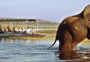 31745-Day Murchison Falls & Kibale Forest Luxury Safari (Lodging)