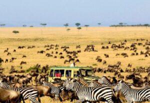 27006 Day Ngorongoro NP, Serengeti NP & Tarangire NP (Luxury Lodging) – 6 Days