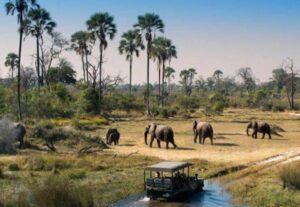 28787 Day Maun, Nata, Okavango Delta and Savuti Safari (Camping)