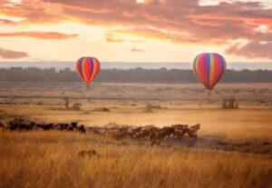 31528 Days Zimbabwe Big 5 Safari-Semi Luxury SS (Lodging)