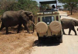 26743-Day Serengeti NP and Ngorongoro Crater Safari (Camping) – 3 Days