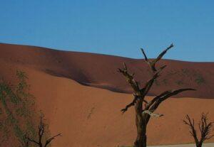 26333 DAYS SOSSUSVLEI SAFARI TOUR NAMIBIA (Accommodated) Private Tour – 3 Days