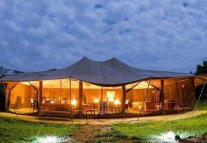 30985 Day Safari To Kenyan Amboseli, Nakuru and Maasai Mara (Lodging)